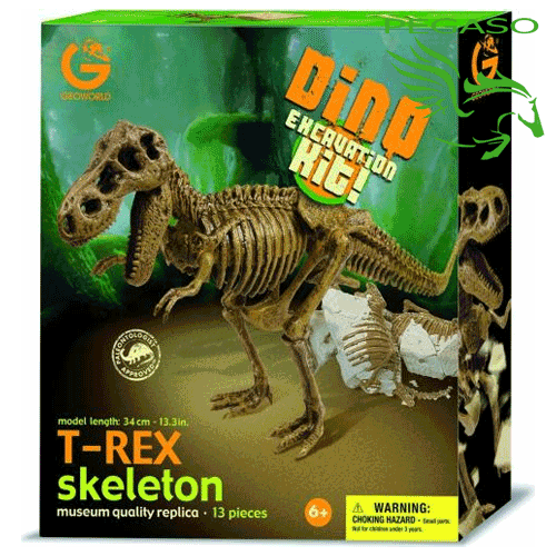 Dino excavation kit - T-Rex